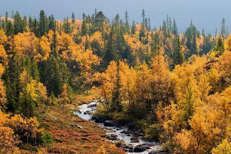 River in autumn colored landscape Stock Photo