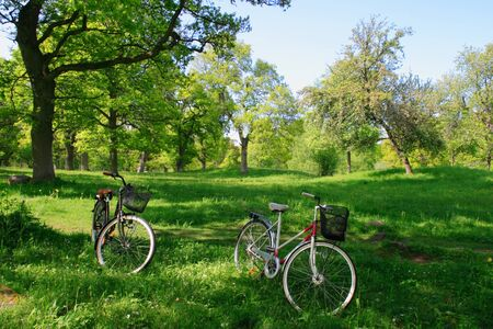 Day trip on bicycle in the nature. photo