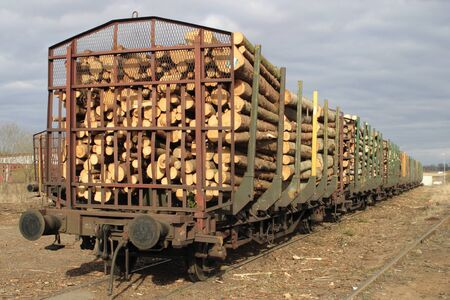 convey: Lumber goods on a traine.