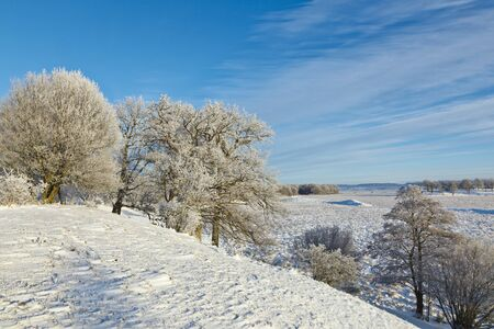 View of the winter landscape photo