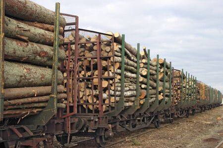 Lumber goods on a traine.