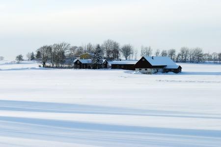 Farm at the snowy field. Archivio Fotografico