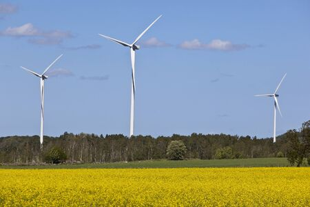 Wind power in the countryside photo