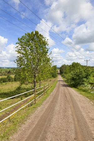 Gravel road on the countryside.