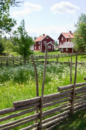Wooden pole fence in a country landscape