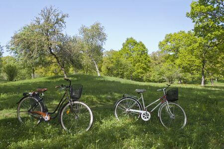 Bicycles parked in the meadow photo