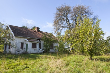 Overgrown garden to the abandoned house