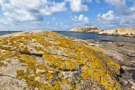 Lichen-covered rocks at the coast Stock Photo - 13773102