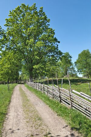 country side: Gravel road in country side landscapes with a wooden fence