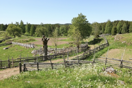 Rural landscape with wooden fences around the fields photo