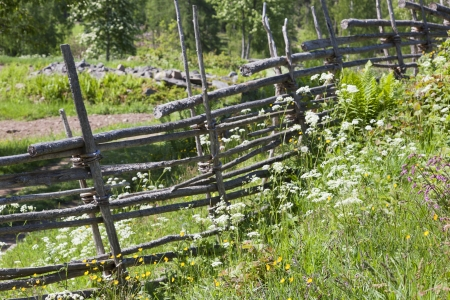 Wooden fence with flowers in the meadown photo