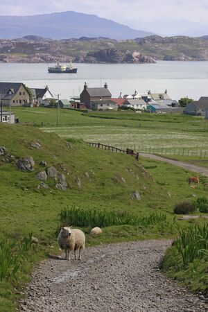 ranching: countryside in Iona. Stock Photo