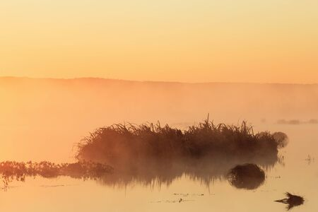 Sunrise with silhouettes in the lake photo