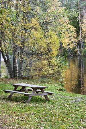 Bench on the shore of a lake photo