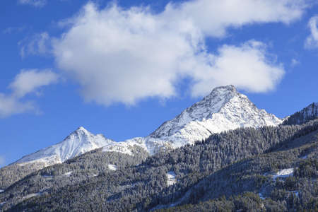 snowcapped: View of mountain peak in wilderness forest