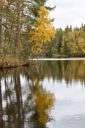 Mirror lake in autumn landscape photo
