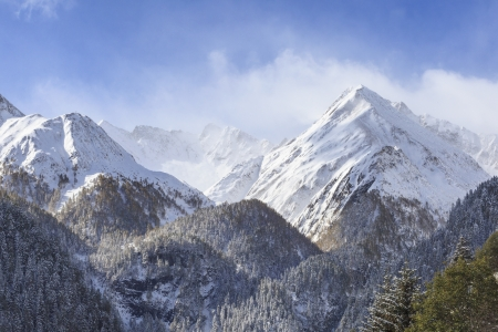 Alp mountain peaks and forests photo