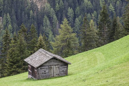 Countryside alp wood shed on the meadow