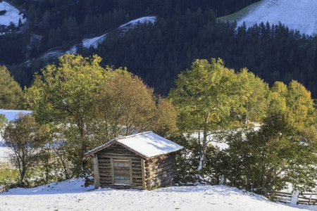 Wooden shed on the field in alp landscapes