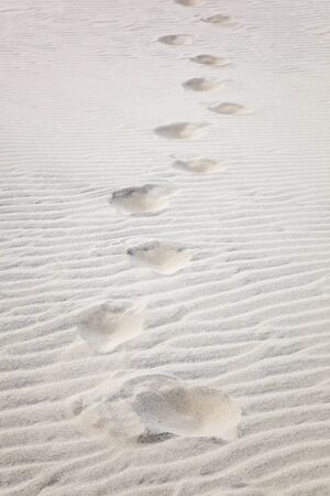 Footprints in the sand dune photo