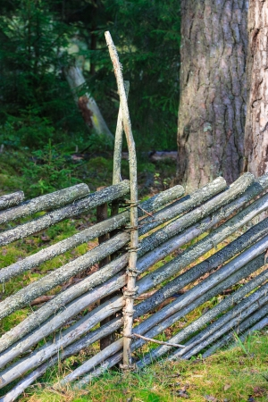 Wooden fence in the forest Stock Photo - 15434638