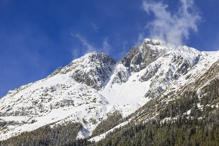 View of mountain peak in wilderness Stock Photo - 15842947