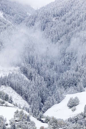 osttirol: Newly fallen snow in the valley Stock Photo