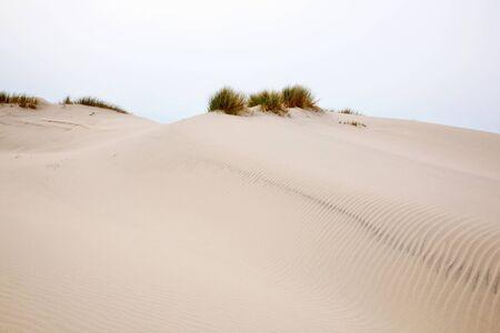 Rolling sand dune landscape photo