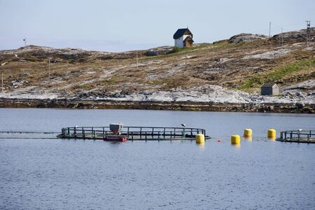 Fish farming with cage systems photo
