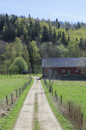 Gravel road to the farm photo