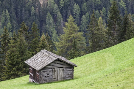 glanz: Countryside alp wood shed on the field