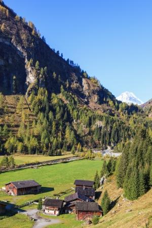 Alp farm in a valley photo