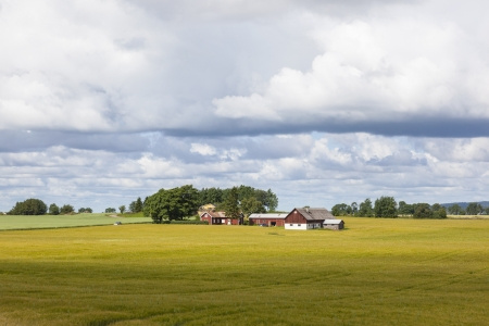Small farm in the rural landscape photo