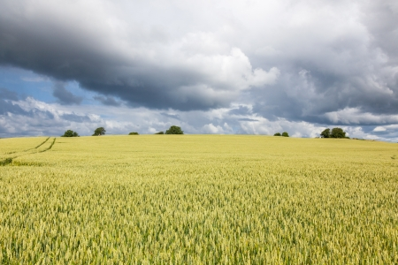 Rural landscape with fields and storm cloud Stock Photo