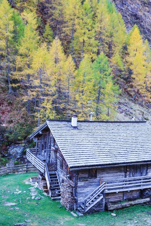 osttirol: Old mountain house in the woods