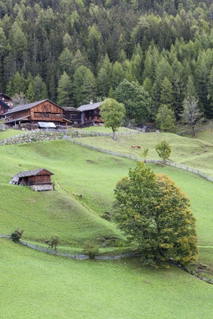 Old farm in the alp in autumn photo
