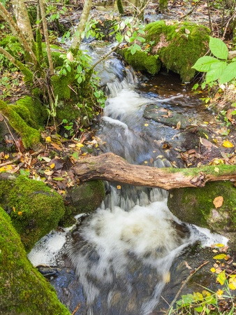 Small stream in autumn forest photo