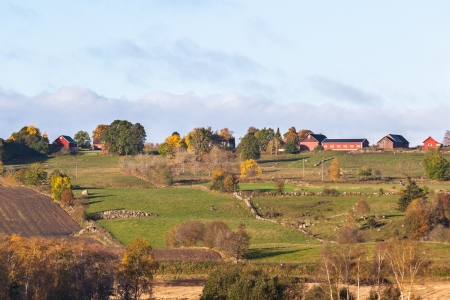 Rural autumn landscape in the countryside photo
