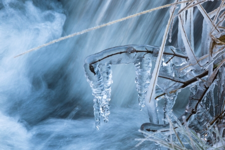 Grass and branches covered with ice at the creek Imagens