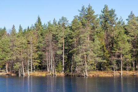 Forest lake in taiga with ice in autumn photo