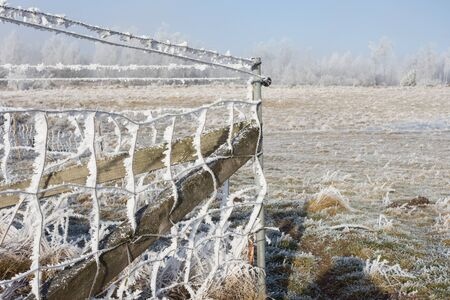 Chain link fencing with hoarfrost photo