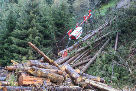 felling: Timer transport by cable car in the woods