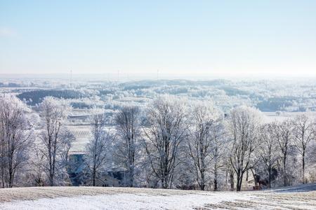 hoarfrost: Hoarfrost covered trees in winter landscape