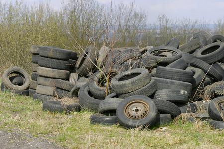 오래 자연 속에서 자동차 타이어를 사용