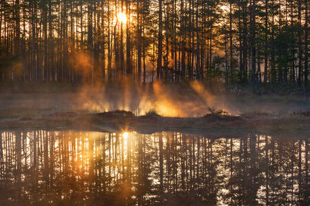 Sunrise with sunbeams through the woods by the lake photo