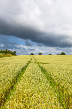 storm cloud: Rural landscape with fields and storm cloud Stock Photo