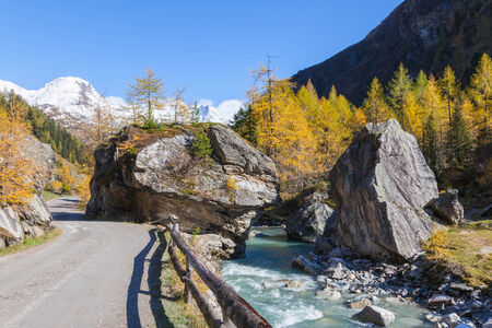 Country road through the alp valley of the River