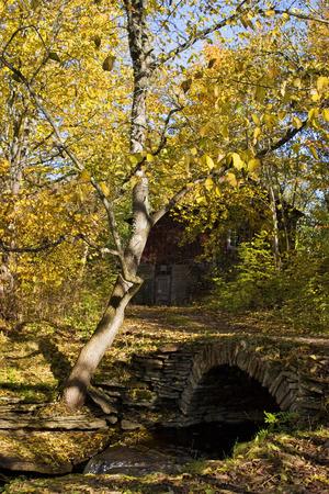 Old stone bridge with a vault. photo