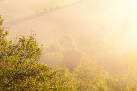 Morning mist at the countryside photo