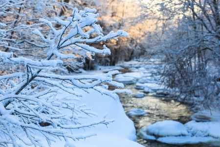 forest river: River in snowy winter landscape Stock Photo